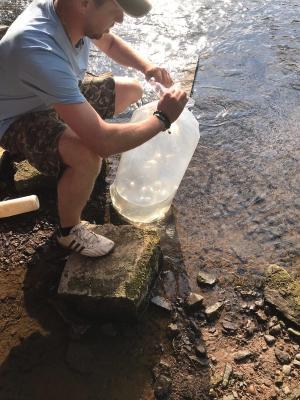 SAC und SAV leisten Beitrag für naturnahen Fischbesatz in der Werra